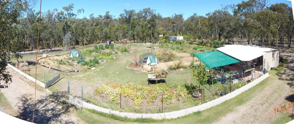 Garden View Aug 15