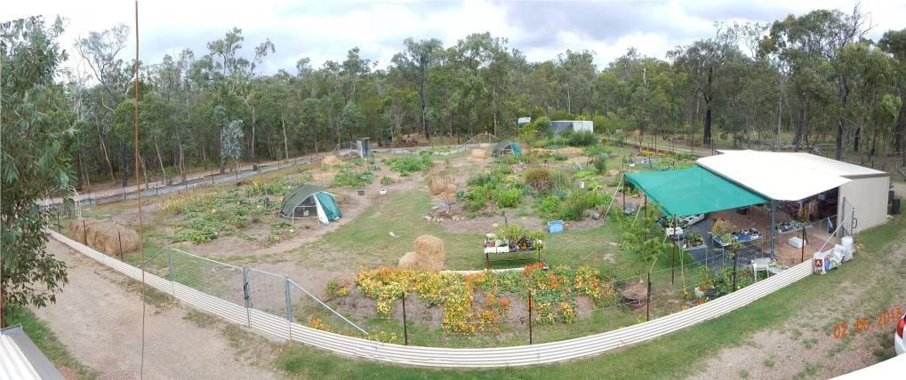 Garden View Jun 15
