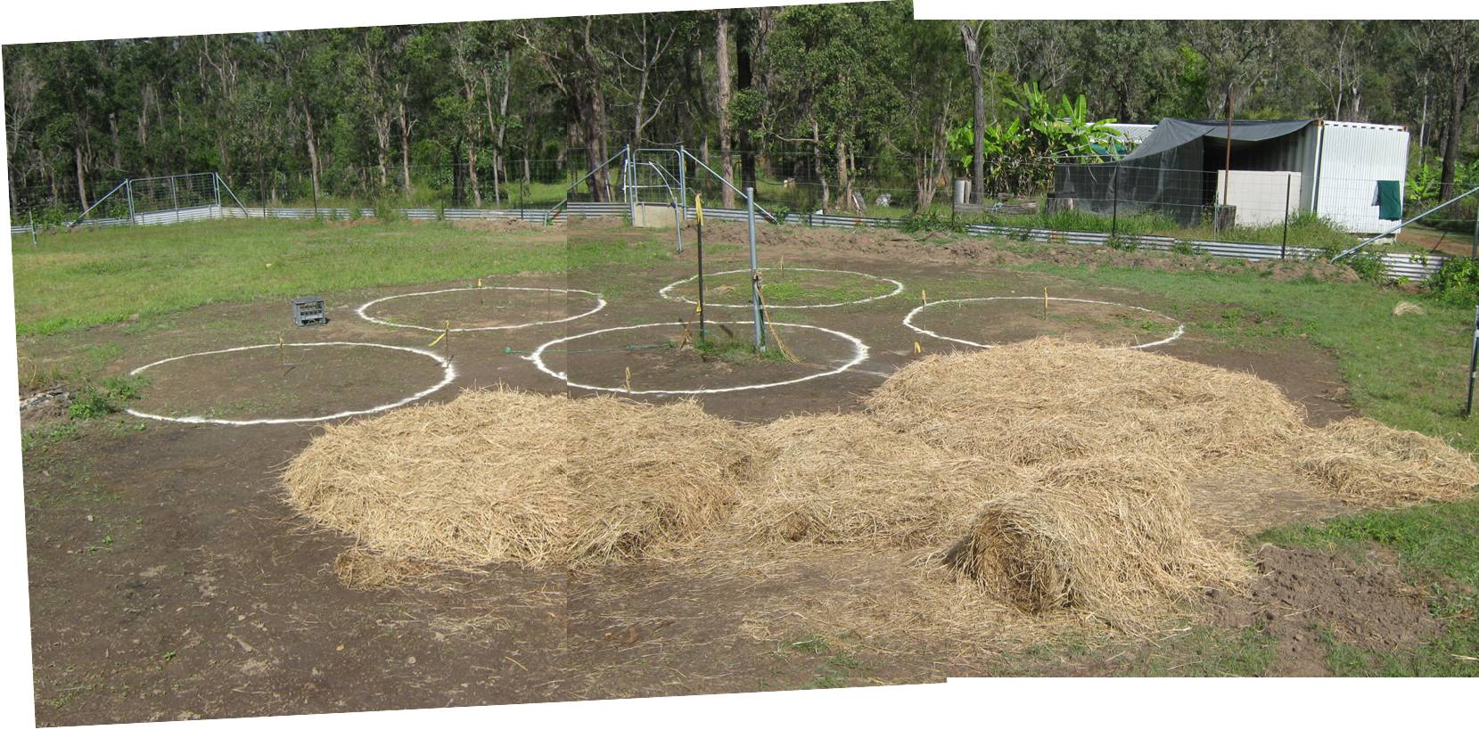 Photo Gallery Dmk Permaculture