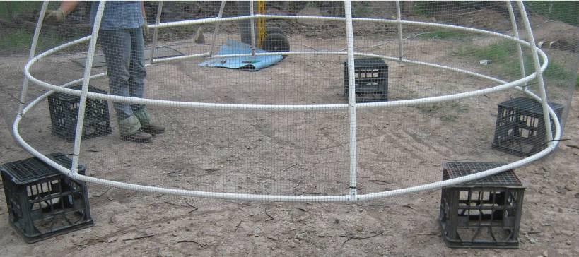 Dome Build 40