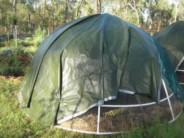 Dome Build 55