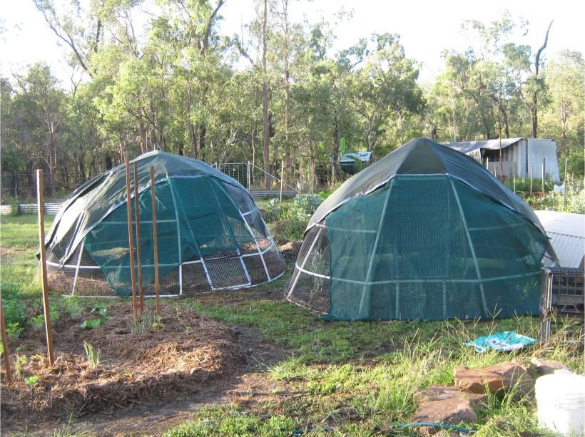 Dome Build 61